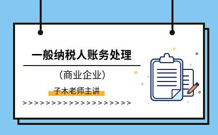 一般纳税人账税处理-模拟经济业务练习(6)