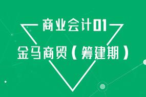商业—金马公司(筹建期)