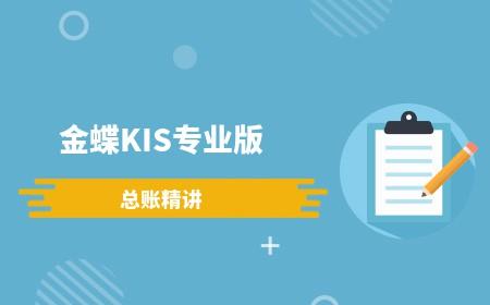 金蝶KIS专业版总账精讲